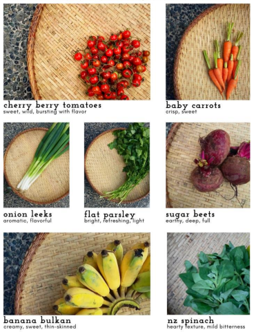 programmed crops from vegetable suppliers in the Philippines - Good Food Community